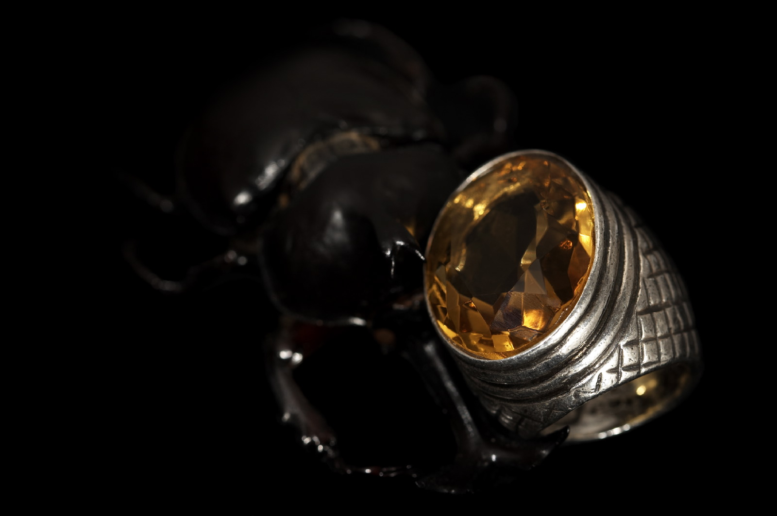 jewellery stag beetle & ring